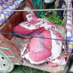 টাঙ্গাইলে কবর থেকে লাশ তোলায় মানসিক প্রতিবন্ধী আটক